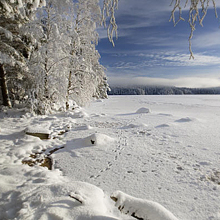 Footsteps on Loch Garten in the snow